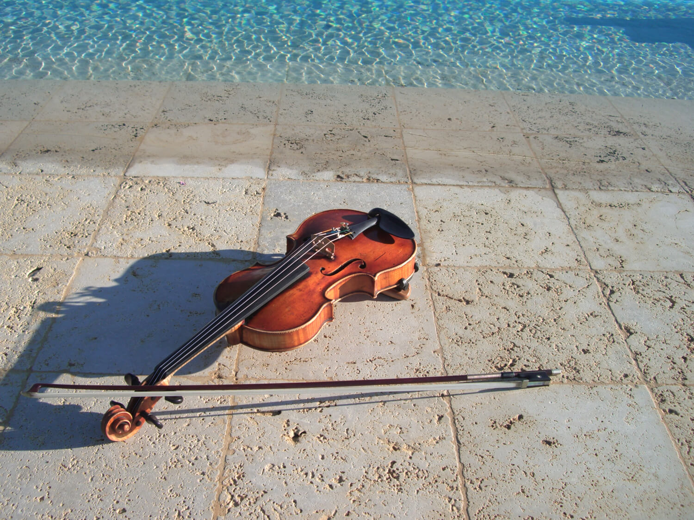 Violinista per Matrimonio Firenze